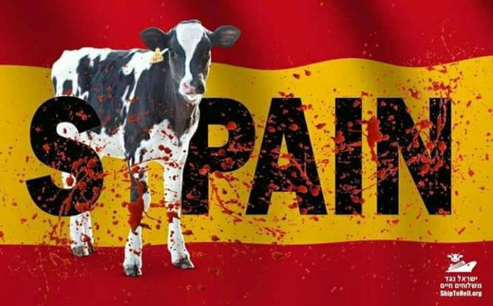 """פעילי זכויות בעלי החיים יפגינו מול שגרירות ספרד: """"להפסי..."""
