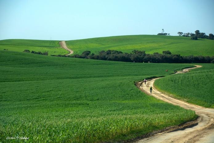 בואו לטייל בנחל שקמה בצפון הנגב אשר עבר שדרוג והנגשה למטיילי...